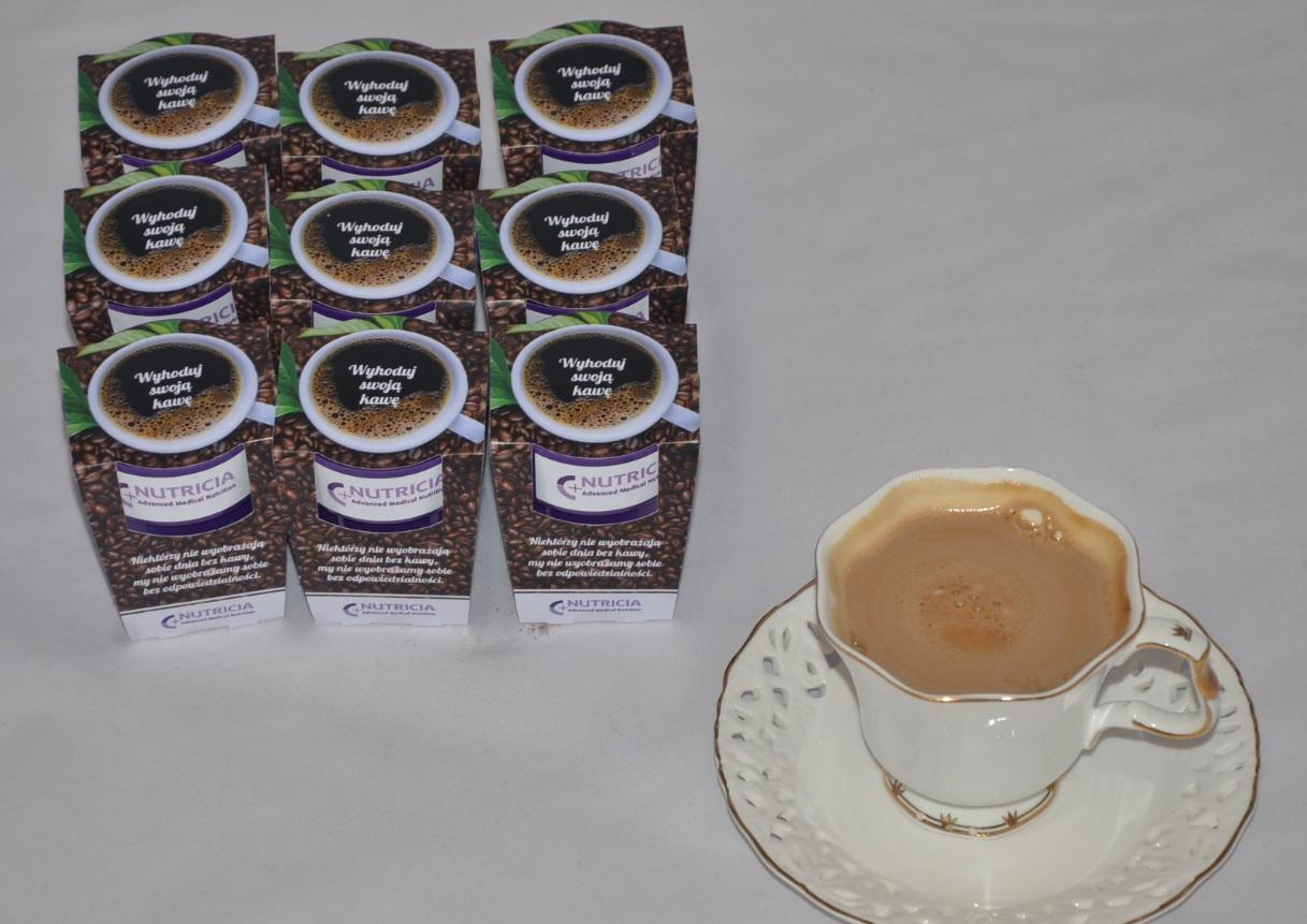 zestaw do własnej hodowli_kawa