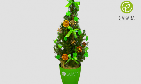 Promotional Christmas tree in a pot