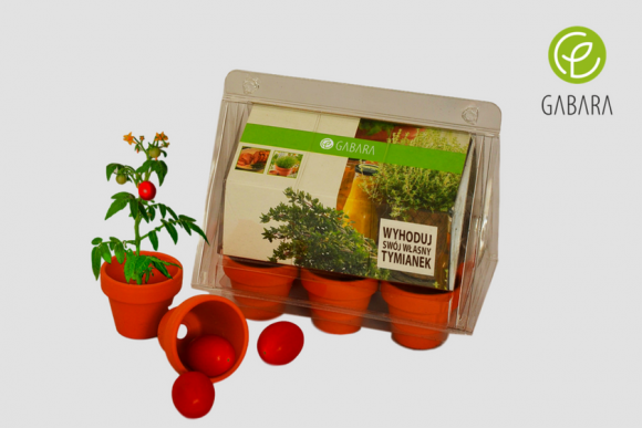 Mini promotional greenhouse