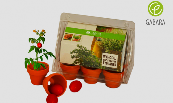 Mini promotional greenhouse