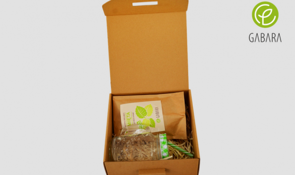 Mint kit in ecological package